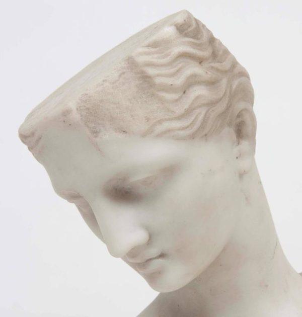19th Century Italian Classical Marble Bust of Venus